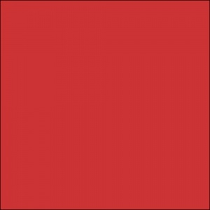 All City Paint Boston Red Sample Swatch