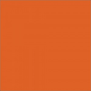 All City Paint Orlando Orange Sample Swatch